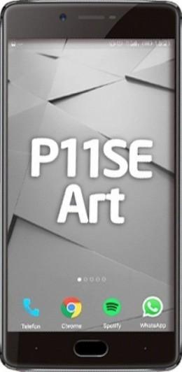 P11SE Art