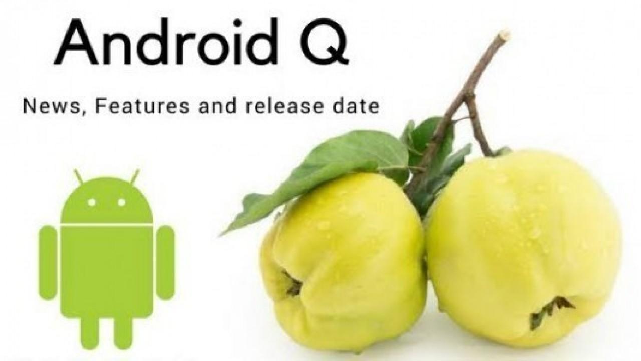 Android Q Yenilikleri Ortaya Çıkmaya Devam Ediyor
