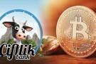 Çiftlik Bank'ın, nereden kazanç elde ettiği ortaya çıktı