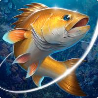 Fishing Hook (Olta)