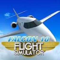 Falcon10 Flight Simulator
