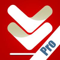 File Downloader Pro