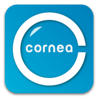 Cornea: Unlimited Filters, Popularity Predictor
