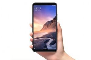 Xiaomi Mi Max 3 kamerasıyla çekilen görüntüler