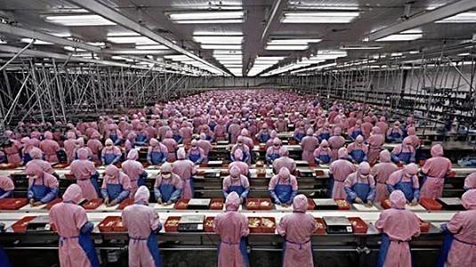 Foxconn fabrikalarının tamamen otomatik olmasını hedefliyor