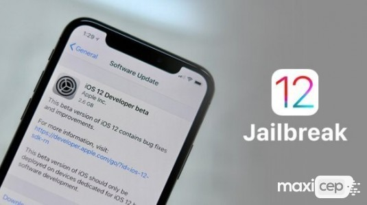 iOS 12 Beta 12 Jailbreak edildi
